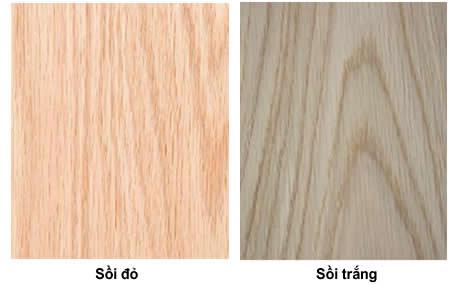 vân cửa gỗ sồi