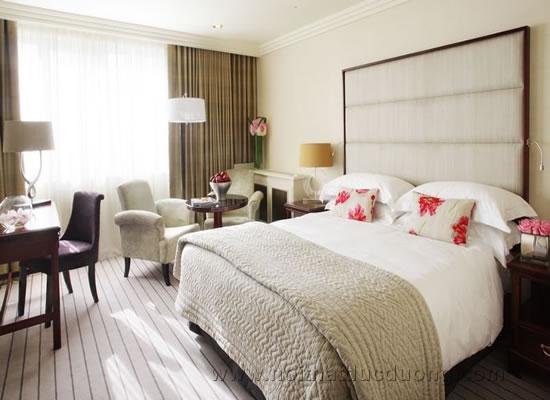 Phòng Suite thiết kể cổ điển tinh tế